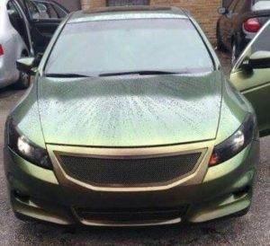 ColorShift Pearls reptile wet hood 4739CS
