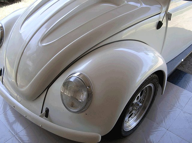 Silver Crystal Ghost Pearl on white bug.